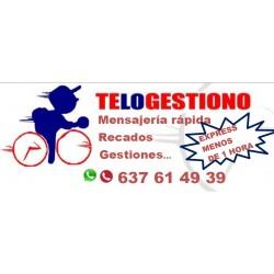 TELOGESTIONO